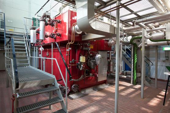 Dampfkraftanlage