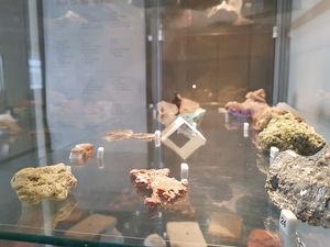 Geologische Sammlung von Prof. Dr. Bernd Meissner